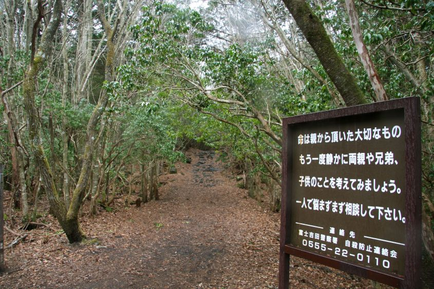 Aokigahara Foresta in Giappone