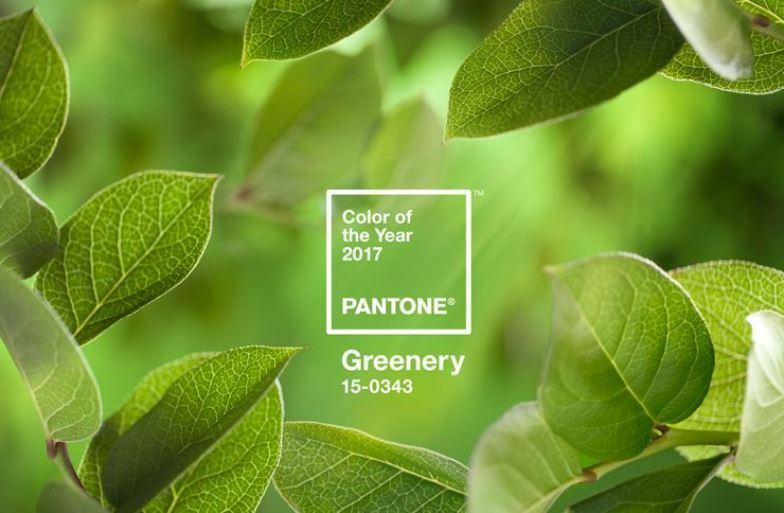 Greenery, colore 2017 by Pantone
