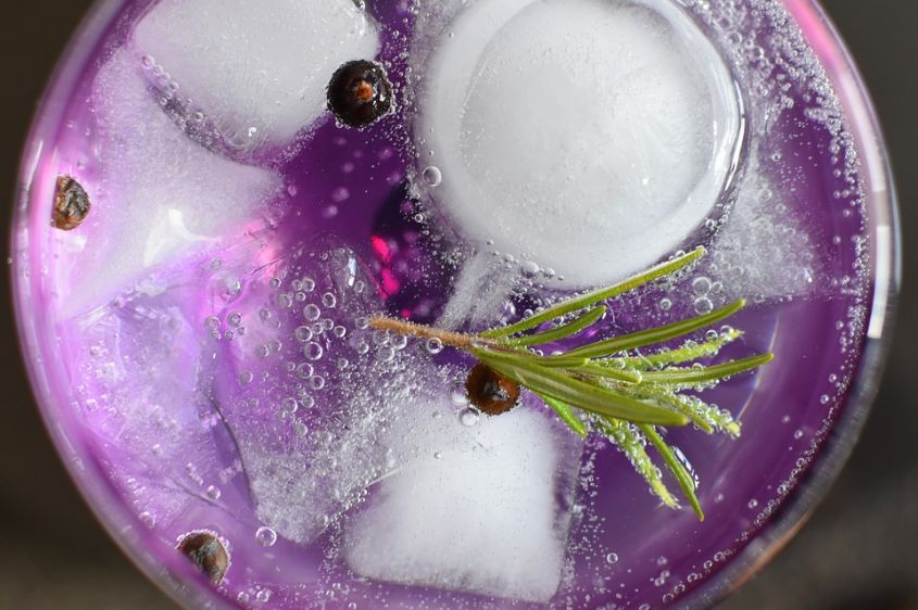Liquor Glass Gin Tonic Drink Relaxation Alcohol