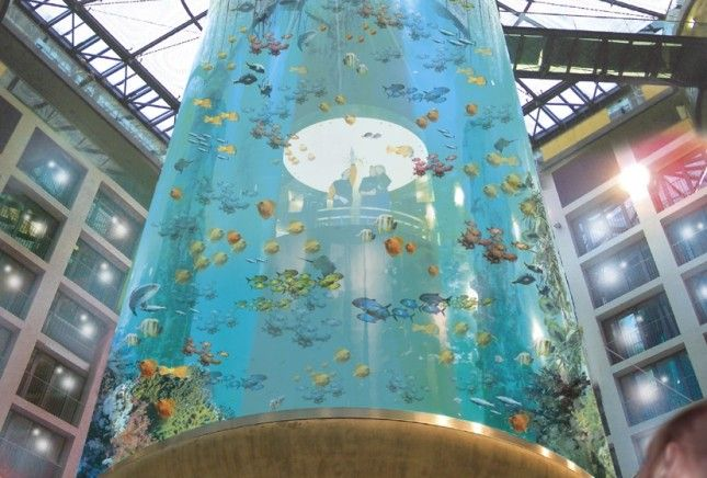The AquaDom in Berlin, Germany-Rich marine vegetation tourism destinations